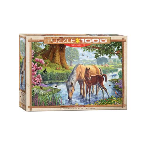 פאזל 1000 חלקים איכותי מבית EUROGRAPHICS דגם 6000-0976 The Fell Ponies by Steve Crisp
